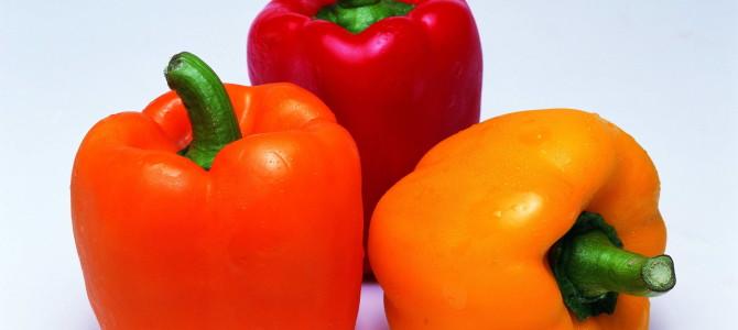 Сладкий болгарский перец, выращивание