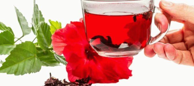 Чай каркаде польза и противопоказания